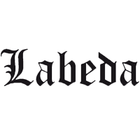 Logo LABEDA ICE